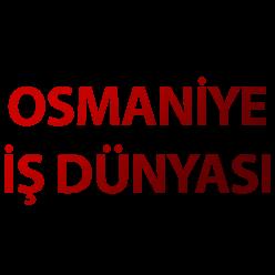 osmaniyeisdunyasi.net